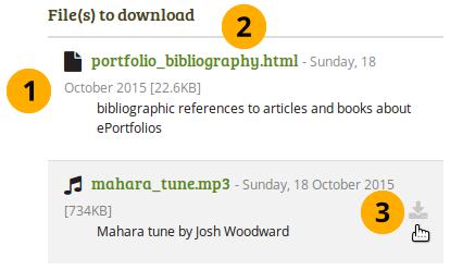 File download details