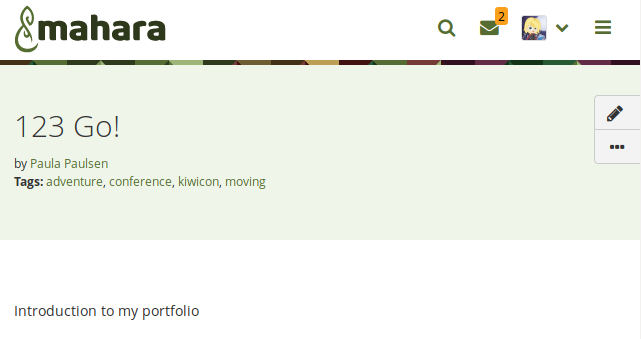 Header area of a portfolio page with new buttons on the side
